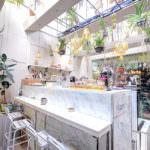 曼谷咖啡 X WanTong Cafe X 洽圖洽市集裡的小清新綠洲