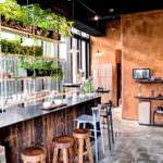 新竹若山茶書院: 城市中的一處森林