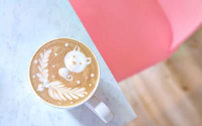 新竹森川咖啡|療癒小柴犬,陪妳喝咖啡!