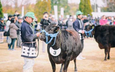 三重縣 | 松阪牛祭  · 日本三大和牛之一熱鬧祭典BBQ