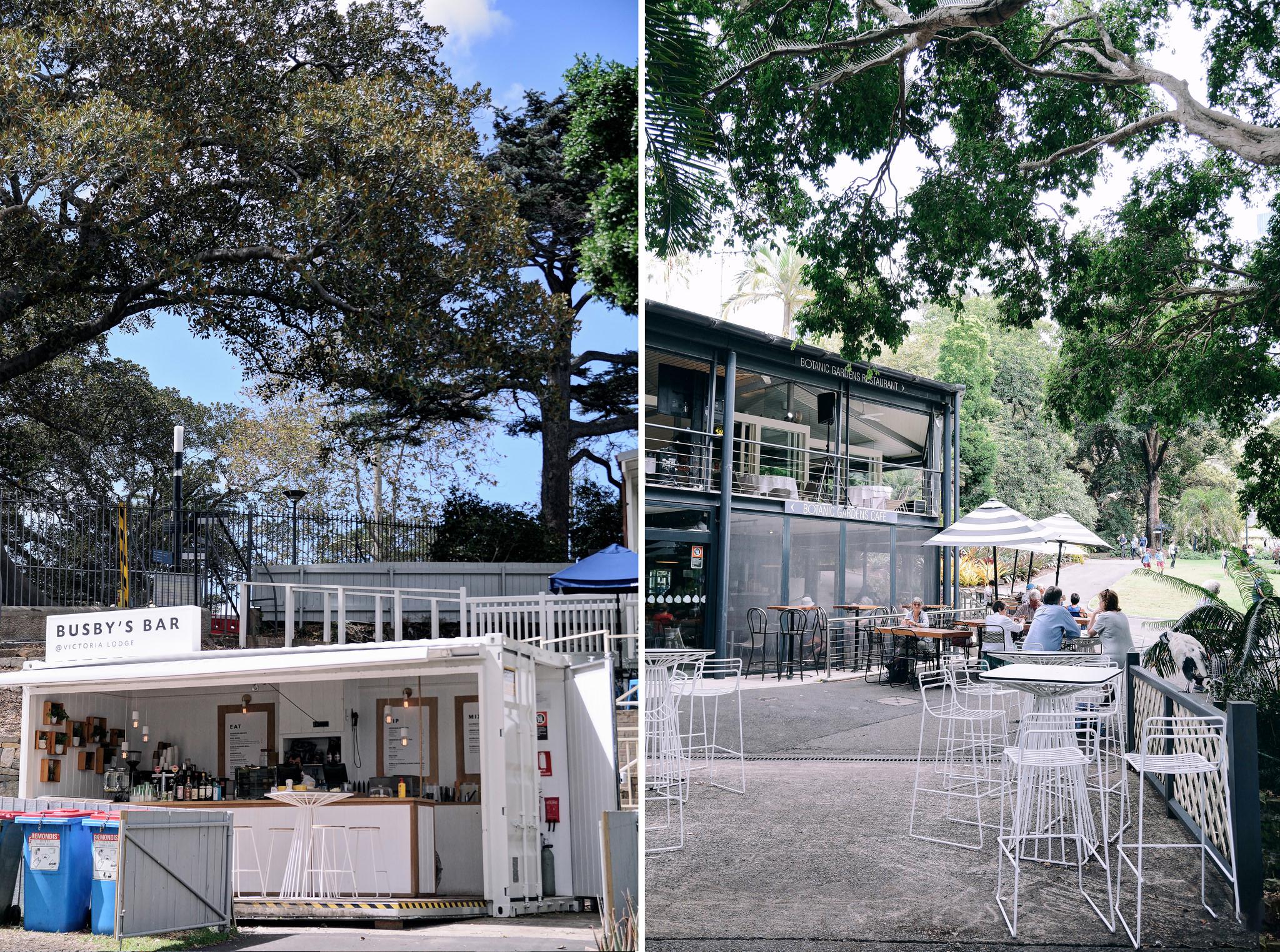 Sydney Royal Botanic Gardens 004
